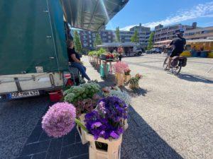 Wochenmarkt Gronau @ Kurt-Schumacher-Platz | Gronau (Westfalen) | Nordrhein-Westfalen | Deutschland