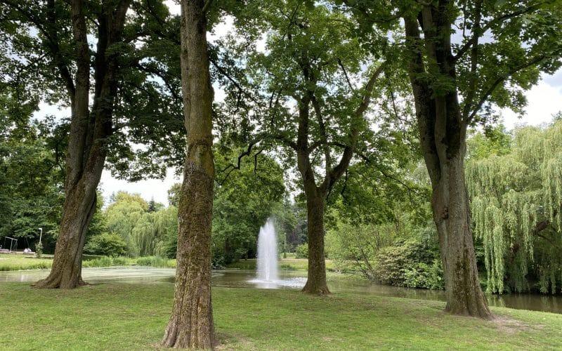 Tier- und Stadtpark Gronau (2)